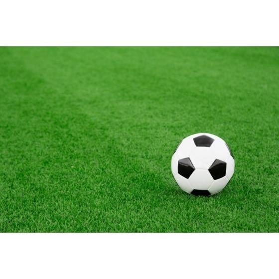 Mundial n. 220 – Per campi...